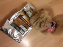 getreidefreies hundefutter für welpen